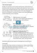 Kooperatives Lernen: Merkblatt, Placemat als Arbeitsmethode, Arbeitsmaterialien und Unterrichtsbeispiel Preview 4