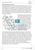 Textbeispiele für die Textarbeit mit Fragen Preview 9