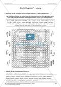 Schreibtraining Fantasieerzählung: Kompetenzstufe B: Arbeitsblätter mit Lösungen Preview 2