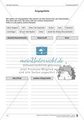 Schreibtraining Fantasieerzählung: Kompetenzstufe B: Arbeitsblätter mit Lösungen Preview 5