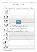 Schreibtraining Bildergeschichte: Kompetenzstufe C:  Arbeitsblätter mit Lösungen Preview 5