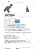 Fabel-Mathematik: Übungen + Lösungen Preview 2