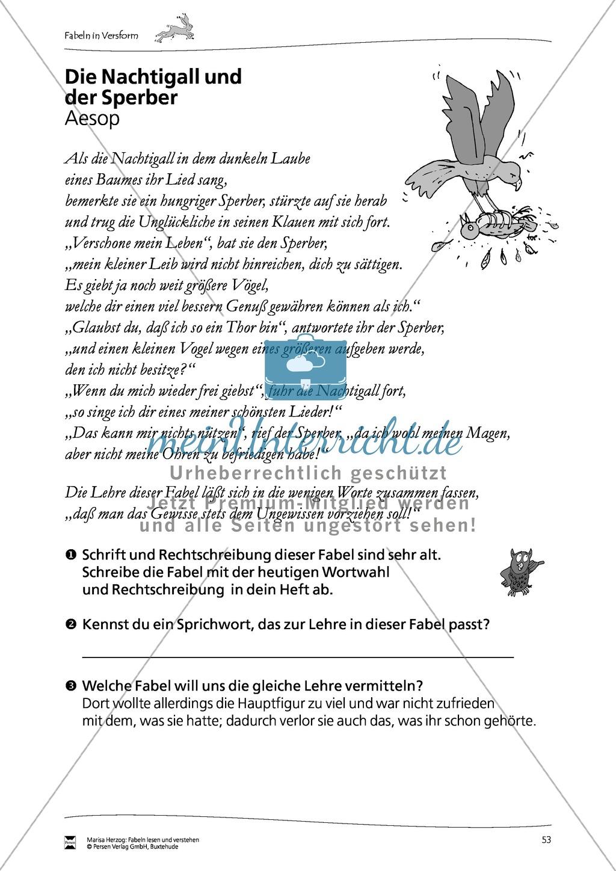 """Fabel """"Die Nachtigall und der Sperber"""": Text + Übungen Preview 1"""