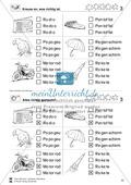 Leseförderung Wortebene: Schwierigkeitsgrad 5: Lesekartei mit Arbeitsblättern und Lösungen Preview 4