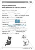 Deutsch als Zweitsprache (DaZ) - Grundfertigkeiten Grammatik: Deklinieren