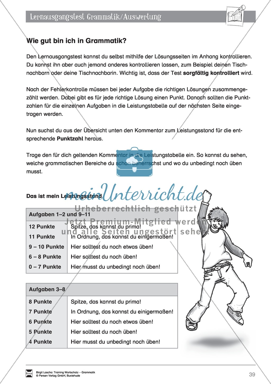 """Deutsch als Zweitsprache (DaZ) - Grundfertigkeiten Grammatik: """"Lerausgangstest"""" + Kontrolle + Selbsteinschätzung Preview 5"""