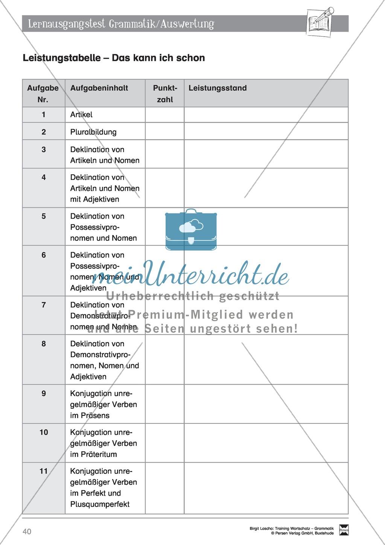 """Deutsch als Zweitsprache (DaZ) - Grundfertigkeiten Grammatik: """"Lerausgangstest"""" + Kontrolle + Selbsteinschätzung Preview 6"""