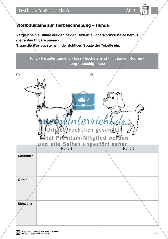Arbeitsblätter Deutsch Tierbeschreibung : Deutsch als zweitsprache daz sprachlicher ausdruck