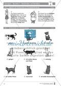 Deutsch als Zweitsprache (DaZ) - Sprachlicher Ausdruck: Beschreiben und Berichten