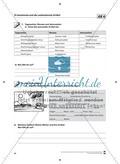 Der Artikel: Lehrerinformationen, Arbeitsblätter und Lösungen Preview 5