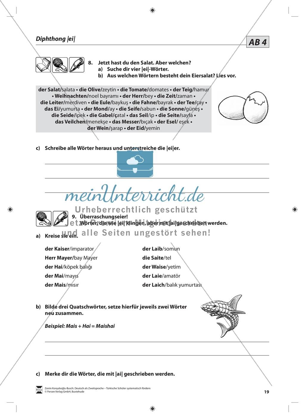 Der Diphthong: Lehrerinformationen, Arbeitsblätter und Lösungen Preview 5