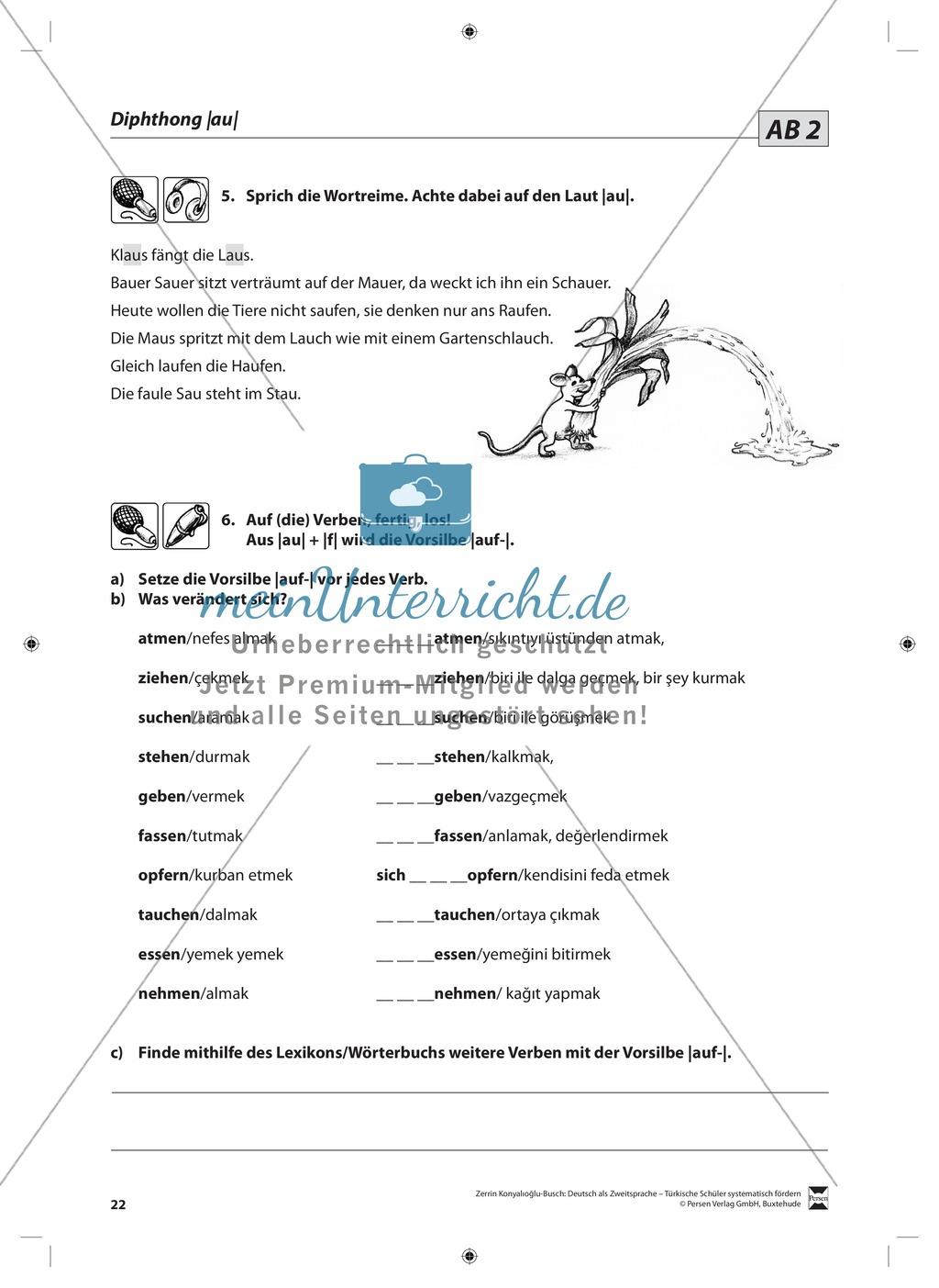 Der Diphthong: Lehrerinformationen, Arbeitsblätter und Lösungen Preview 8
