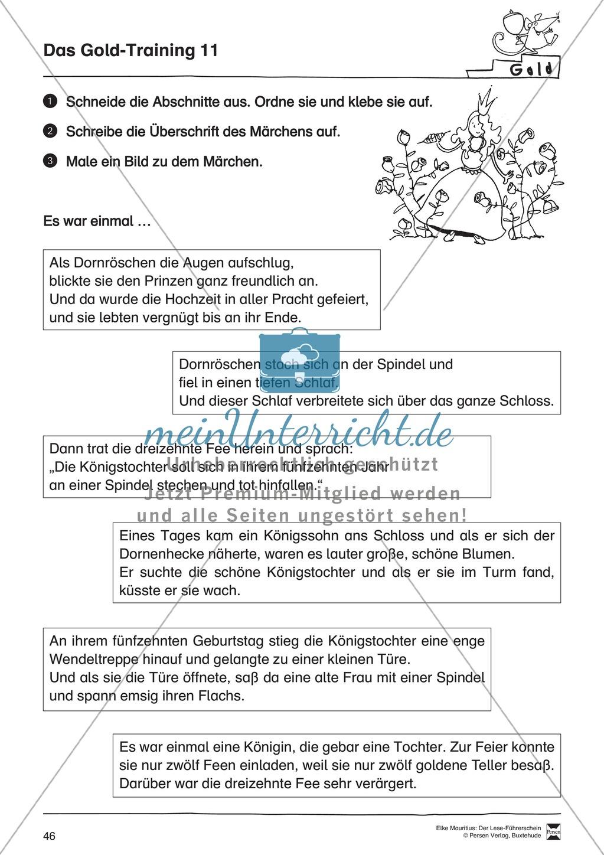 Leseführerschein Gold: Trainings- und Prüfungsblätter, Auswertungsbögen und Lösungen Preview 10
