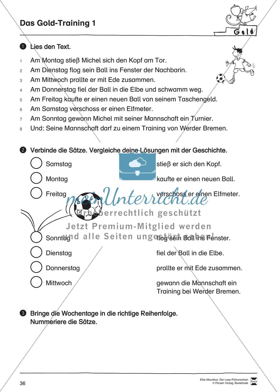 Leseführerschein Gold: Trainings- und Prüfungsblätter, Auswertungsbögen und Lösungen Preview 0