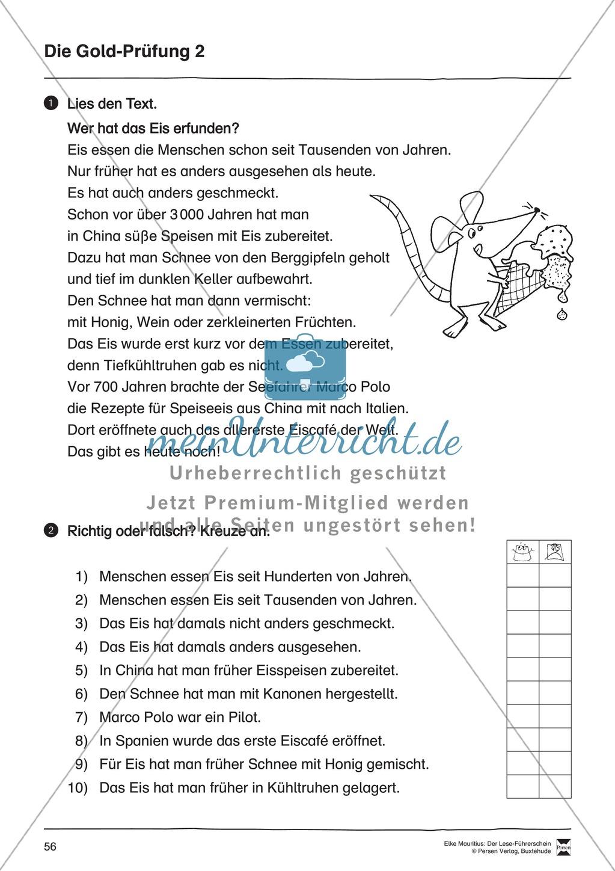 Leseführerschein Gold: Trainings- und Prüfungsblätter, Auswertungsbögen und Lösungen Preview 20