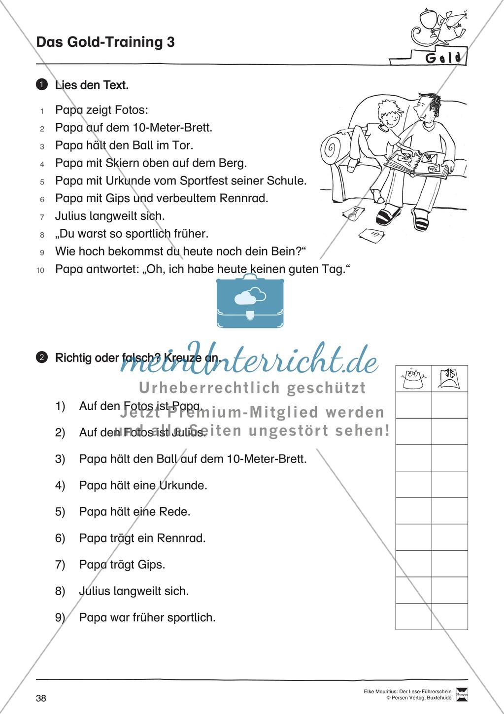 Leseführerschein Gold: Trainings- und Prüfungsblätter, Auswertungsbögen und Lösungen Preview 2
