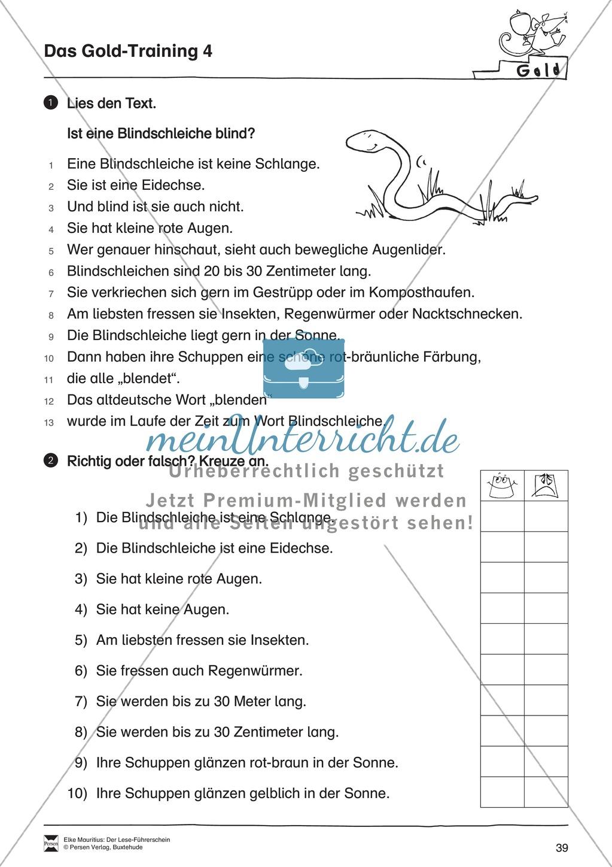 Leseführerschein Gold: Trainings- und Prüfungsblätter, Auswertungsbögen und Lösungen Preview 3