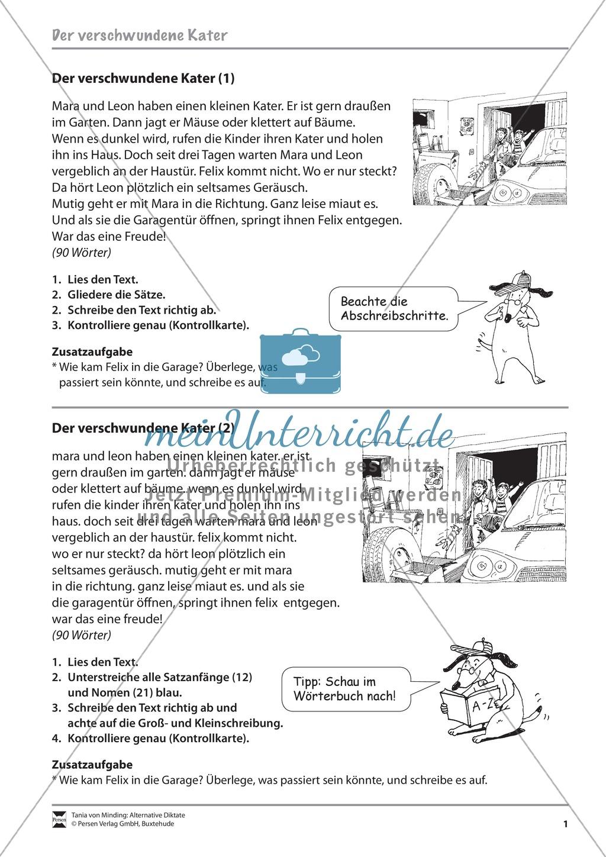 Abschreiben, Groß- und Kleinschreibung: Übungen Preview 0