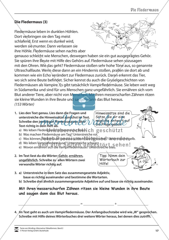 Die Rechtschreibarbeit: Arbeitstexte und Lösungen Preview 9