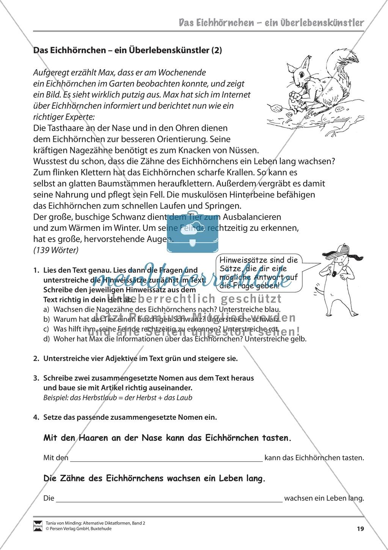 Die Rechtschreibarbeit: Arbeitstexte und Lösungen Preview 11