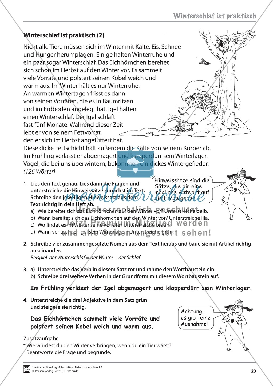 Die Rechtschreibarbeit: Arbeitstexte und Lösungen Preview 15