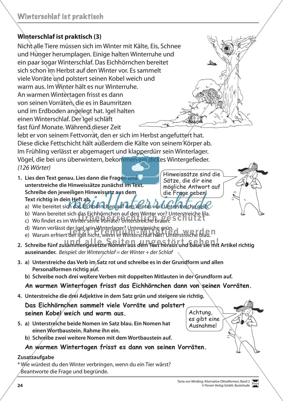 Die Rechtschreibarbeit: Arbeitstexte und Lösungen Preview 16