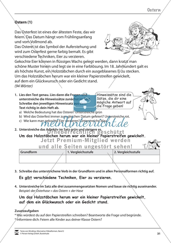 Die Rechtschreibarbeit: Arbeitstexte und Lösungen Preview 23