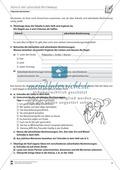 Adverb und adverbiale Bestimmung: Übungen und Lösung Preview 2