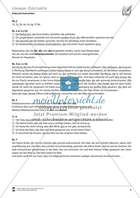 Relativsätze: Übungen und Lösung Preview 2