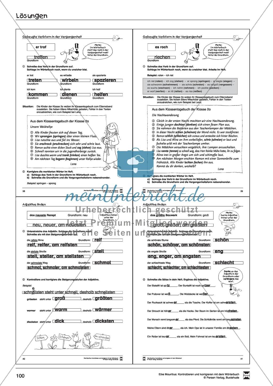 Spezifische Formen finden und Korrigieren: Übungsblätter, Selbsteinschätzungsbogen, Test und Lösungen Preview 27