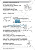 Die Bremer Stadtmusikanten: Text in drei Niveaustufen Preview 6