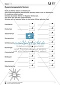 Wörterbuch - Nachschlagetechniken: Arbeitsblätter + Aufgaben + Übungen + Lösungen Preview 7
