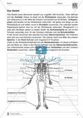 Körper und Gesundheit: Aufgaben + Lesetext +  Lückentext Preview 2