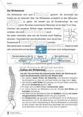 Körper und Gesundheit: Aufgaben + Lesetext +  Lückentext Preview 5