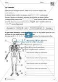 Körper und Gesundheit: Aufgaben + Lesetext +  Lückentext Preview 6