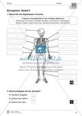 Körper und Gesundheit: Aufgaben + Biologie - Test Preview 3