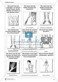 Körper und Gesundheit: Aufgaben + Fragekarten Preview 2