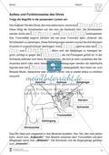 Aufbau und Funktionsweise eines Sinns: Arbeitsblätter und Lösungen Preview 2