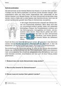 Zahnkrankheiten: Text + Übungen Preview 1