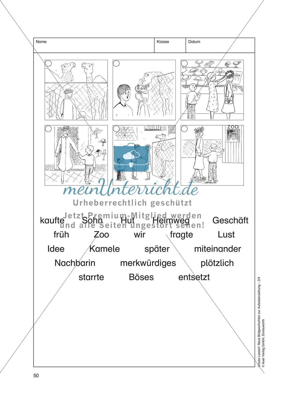 Bildergeschichten im DU - Der neue Hut: Arbeitsblätter Preview 2