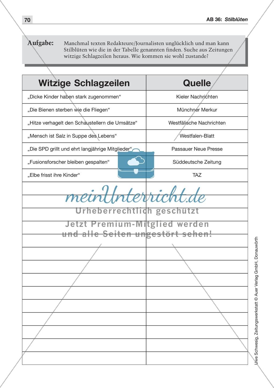 Zeitungsvergleich: Arbeitsblätter und Lösungen Preview 22