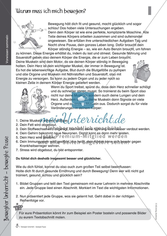 Übungen und Spiele für eine bewegte Grundschule: Material komplett Preview 3