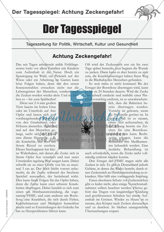 Zeitungsartikel verstehen: Text + Übungen + Lösungen schwer Preview 0