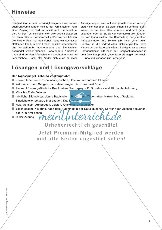 Zeitungsartikel verstehen: Text + Übungen + Lösungen schwer Preview 3