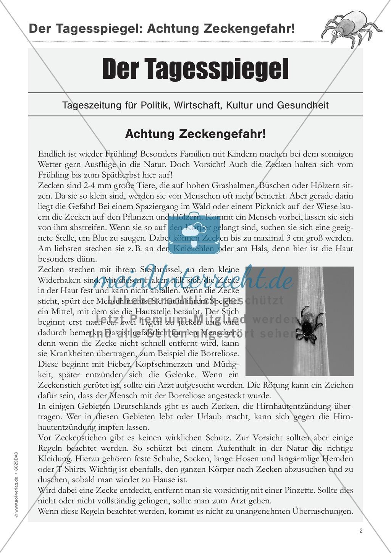Sachtexte verstehen: Der Zeitungsartikel Preview 1