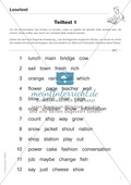 Diphthonge und Konsonanten: Der Lesetest: Arbeitsblätter und Diagnosebogen Preview 3