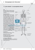 Biologie, Bau und Funktion von Biosystemen, Skelett, Humanbiologie, Körperbau, Knochen