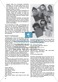 Erzähl mal was! Erzählkompetenzen in der Grundschule - kreative Unterrichtsideen: Material komplett Thumbnail 19