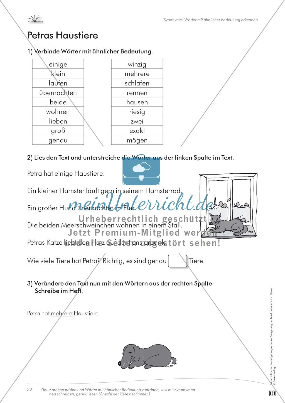 Lesekompetenz: Synonyme: Wörter mit ähnlicher Bedeutung finden: Arbeitsblätter und Lösungen Preview 1