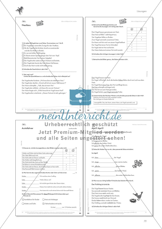 Lesekompetenz: Falsche Wörter finden und ersetzen: Arbeitsblätter und Lösungen Preview 7